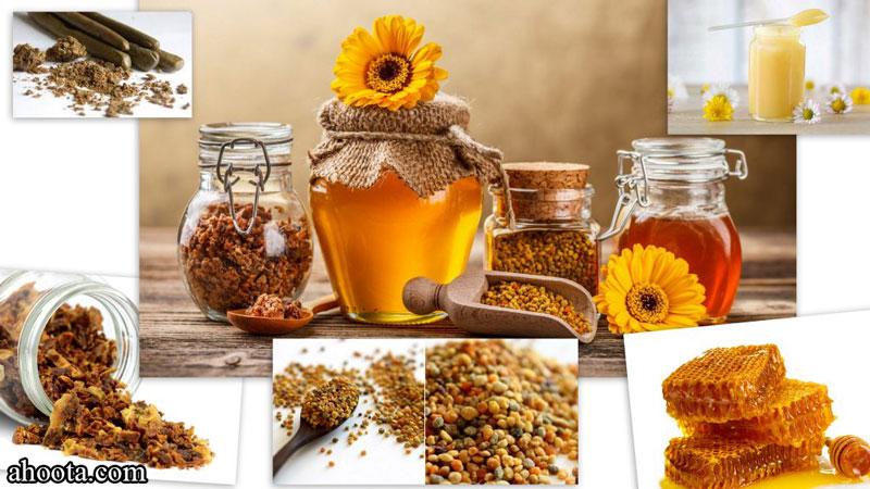 هر آنچه که باید درباره زنبور عسل بدانید!